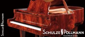 SchulzePollmann